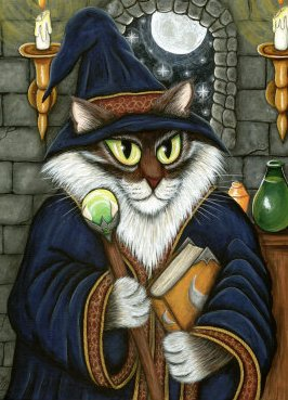 merlin-the-magician-as-a-cat-poster-c12325049da028.jpg